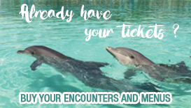 Encounters-menus-marineland