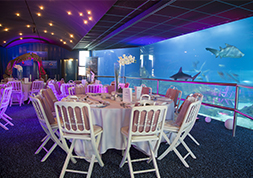 Tunnel des requins - Marineland Special Events